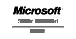 MSSilverPartner